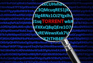 Download Torrents with VPN